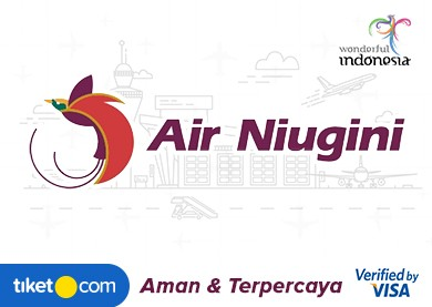 airlines-airniugini-flight-ticket-banner-2