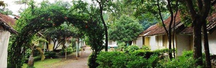 Pulo Village