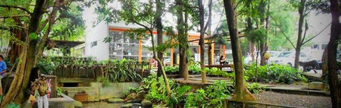 Kuntum Nurseries
