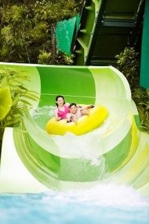 Adventure Cove Waterpark Admission with One-way Transfer