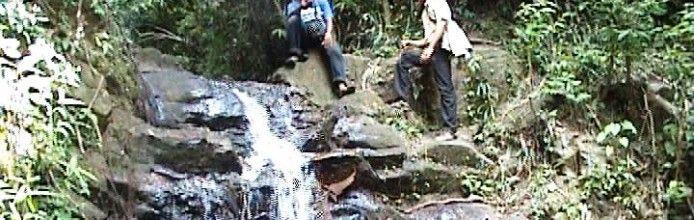 Hutan Raya Marhum