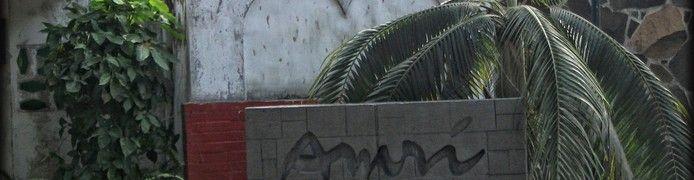 Amri Yahya Gallery