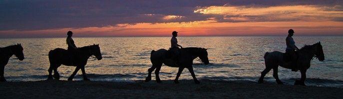 harga tiket Bali Horse Beach Adventure - Serangan Island