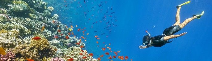 harga tiket Bali Marine Activities - Serangan Island