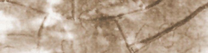 Batu Tulis Barukai