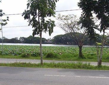 Danau Raja