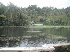 Situ Janawi