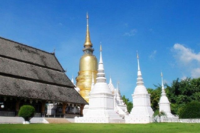 Full Day Tour to Doi Suthep & Temples (Wat Phra Singha, Wat Chedi Luang, Wat Chiang Man Incl Lunch (Private Tour)