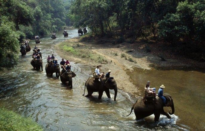 harga tiket Full-day to Chiang Dao Elephant Safari with Bamboo Rafting (Join Tour)