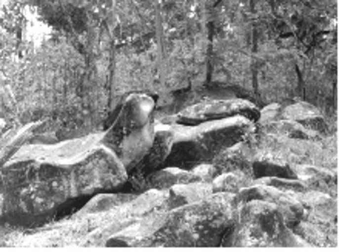 Batu Gamelan