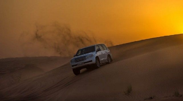 Half-day Red Dune Safari in Dubai with VIP Majlis and Dinner