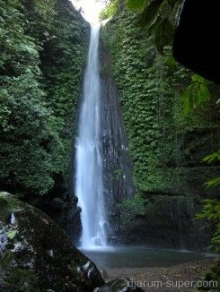 Desa Wisata Tetebatu