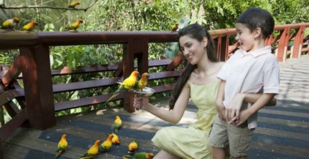 harga tiket Jurong Bird Park with Two-way Transfer