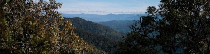 Mount Kemiri