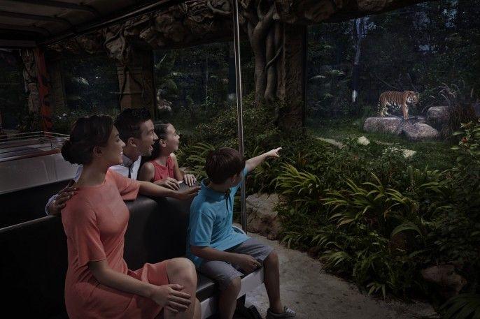 harga tiket Night Safari Fixed date Admission with English Tram Ride