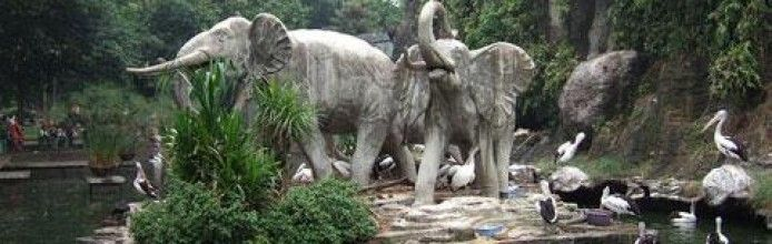 Sriwijaya Zoo