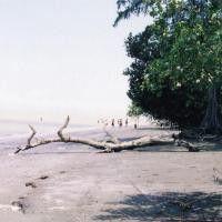 Pantai Kuala Serapuh