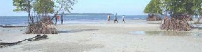 Matang Ulim Idi Cut Beach