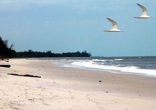 Pantai Mentiba