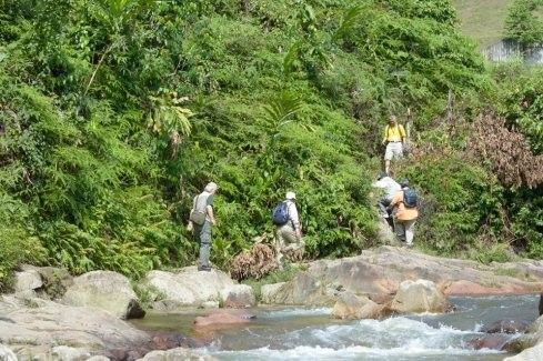 Rainforest Trekking and Aboriginal Museum Sightseeing Tour