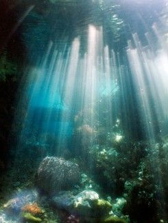 Perairan Raja Ampat
