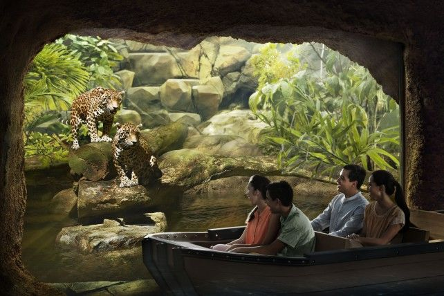 River Safari with Two-way Transfer