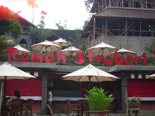 Rumah Stroberi