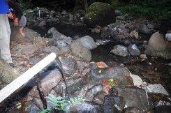 Sumber Air Panas Alami Sabu Tobo