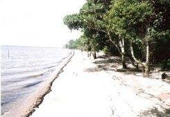 Pantai Salolo