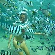 Club Aqua Bali
