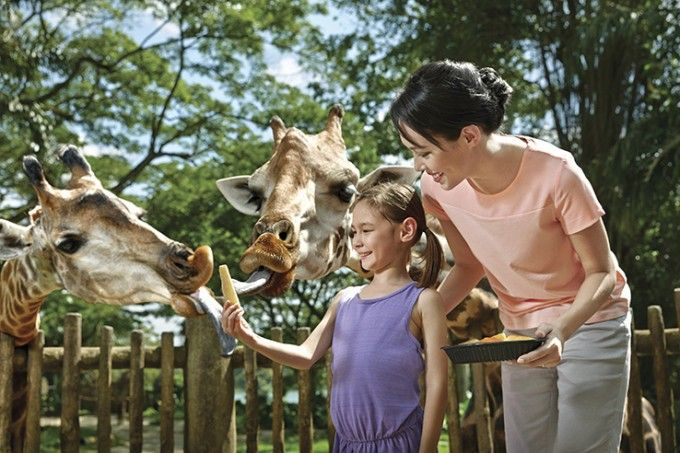 harga tiket Singapore Zoo and River Safari Combo with Two-way Transfer