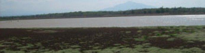 Lake Cijawura