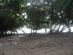 Pantai Pekaretan